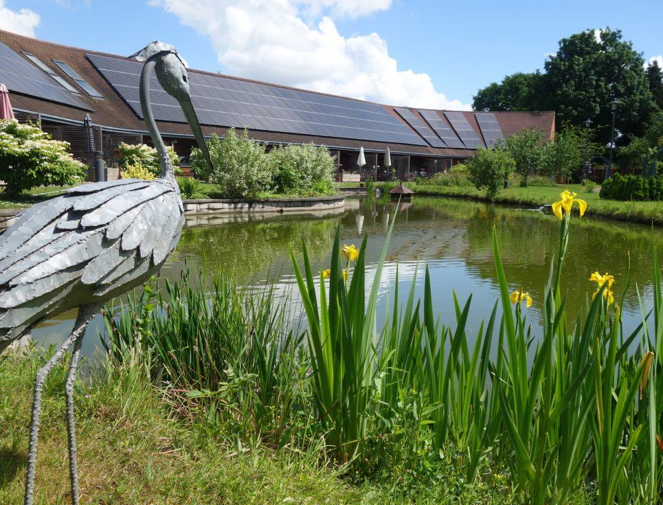 garden-with-heron-and-iris
