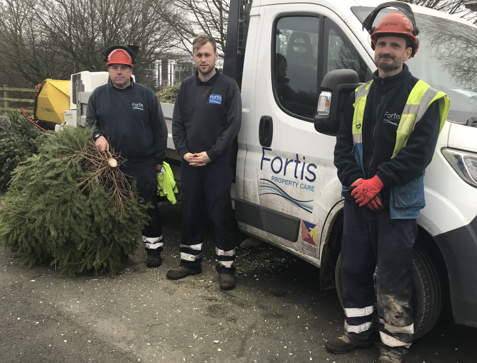 Fortis-Living-afternoon-volunteers-e1572519682173